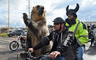 5 вещей о которых важно не забывать мотоциклистам