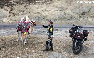 Беременность и путешествия на мотоцикле по всему миру