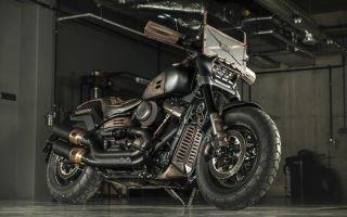 Harley-Davidson Fat Max — вдохновленный Безумным Максом
